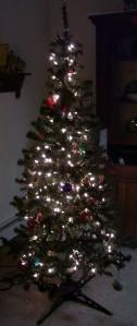The Tara Tree All Lit Up!